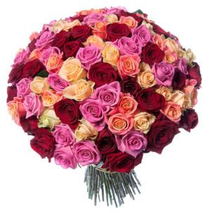 Розы Россия микс 4