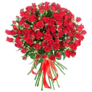 Розы Кустовые красные